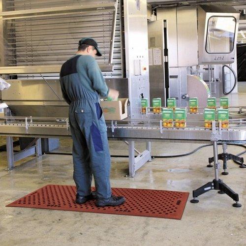 Grade 'A' Food Production No. 482